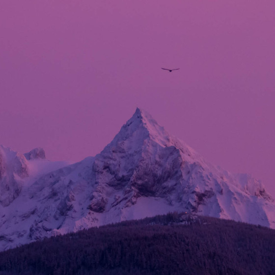 Unfiltered Sunrise in Coast Mountain Range BC
